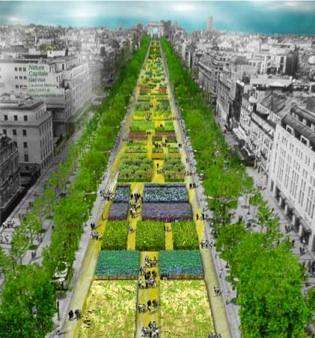 Nature_Capitale_Champs_Elysees_CheckYourParis